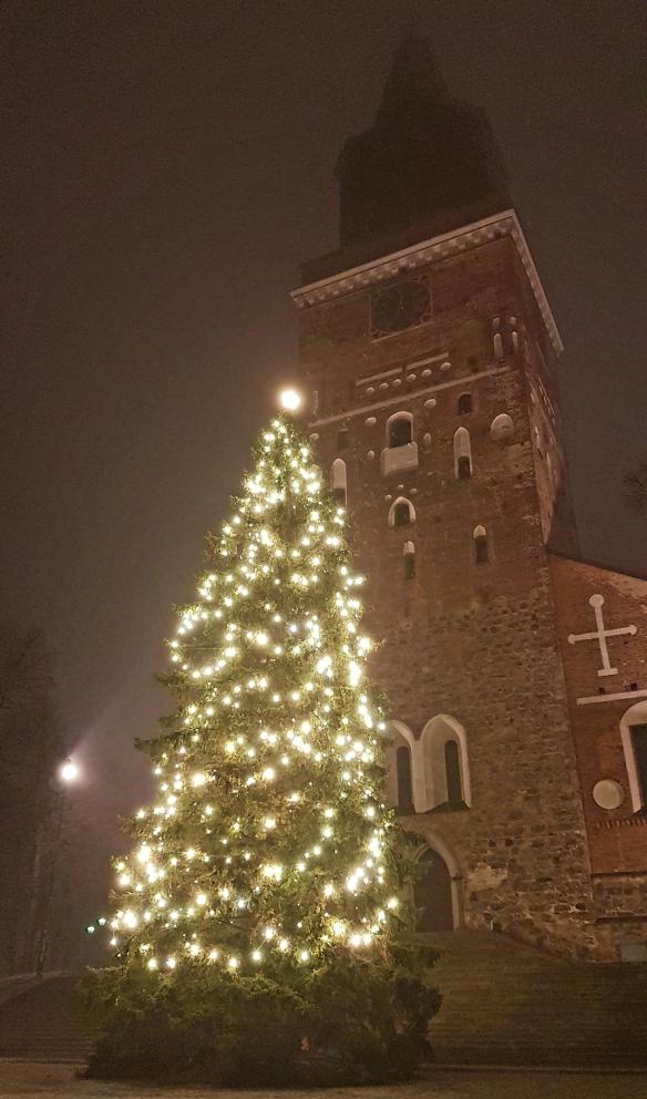 Julgran framför Åbo domkyrka. Foto: Tora Wall